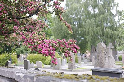 Cemetery in Orebro