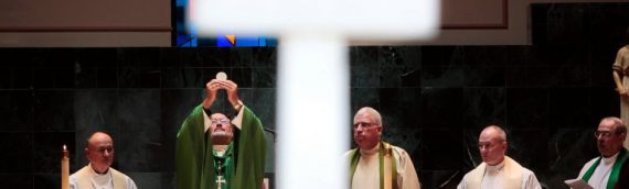 Bishop's Blog: Treasures of the Faith —the Priesthood and the Eucharist
