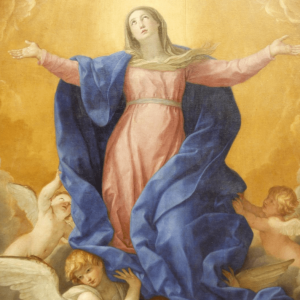 Bishop's Blog: The Feast of the Assumption