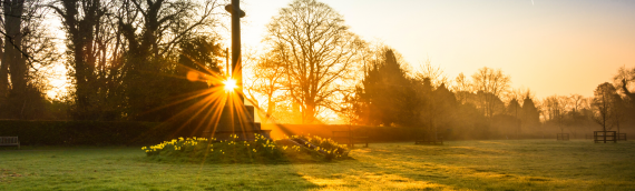Bishop's Blog: Embracing A New Day