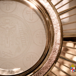 Bishop's Blog: Created Anew and Eucharistic Revival