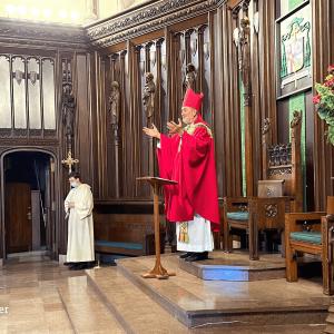 Bishop's Blog: Steps Forward